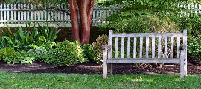 Lighten up brightening and enlivening the shade garden for Garden design 2 acres
